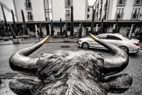 Schwarzweiß Aufnahme mit farbigen Elementen eines Stierkopfes im Vordergrund und einer Mercedes E-Klasse im Hintergrund