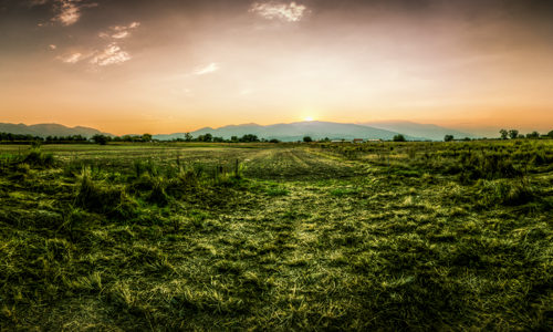 Panorama Aufnahme vor dem Olymp in Griechenland. Im Vordergrund Felder und im Hintergrund die tief stehende Sonne über den Bergen des Olymp