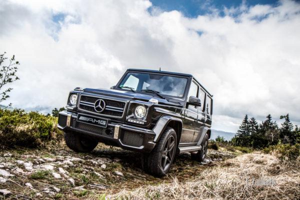 Eine Mercedes G-Klasse in ihrem natürlichen Umfeld