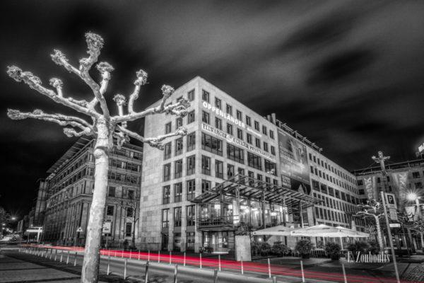 Schwarzweiß Aufnahme bei Nacht mit roten Lichtschweif, der den Verkehr kennzeichnet am Börsenplatz in Stuttgart. Im Vordergrund eine Platane und der Verkehr, der durch die Börsenstraße zieht. Im Hintergrund das Lillet (ehem. California)